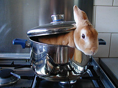 Image result for bunny boiling scene fatal attraction