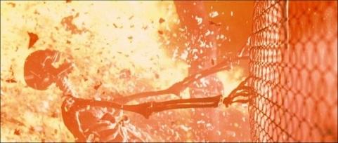 Image result for terminator 2 sarah connor dream